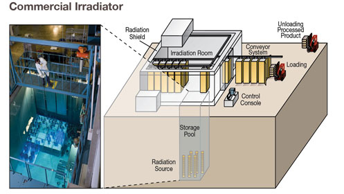 Photo of Commercial Irradiator and accompanying artist's rendering of Commercial Irradiator layout with the words: Commercial Wet-Source-Storage Irradiator. The sealed source is stored in water and raised into the air to irradiate a product that may be moved into the room on a conveyor system. This is an example of a panoramic wet-source-irradiator. Photo courtesy of Nordion.